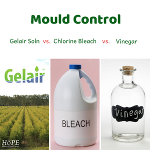 Mould Control: Gelair Soln vs. Chlorine Bleach vs. Vinegar