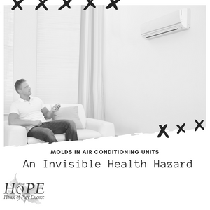 Mold in Air Conditioning Units: An Invisible Health Hazard