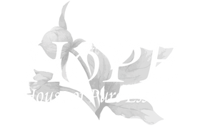 House of Pure Essence