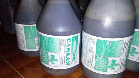 Canaan Microzyme 1 Gallon