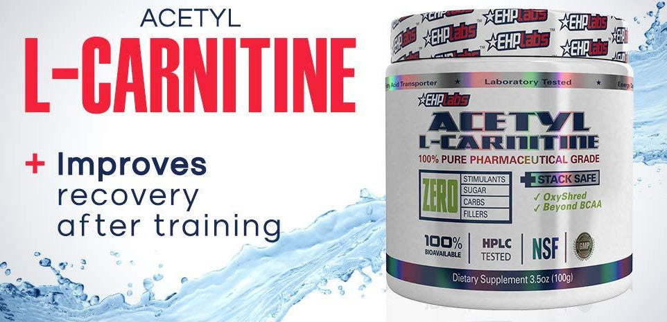 Acetyl L-Carnitine – Supps42