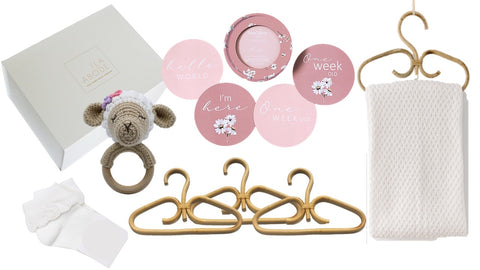 Arya Baby Girl Gift set