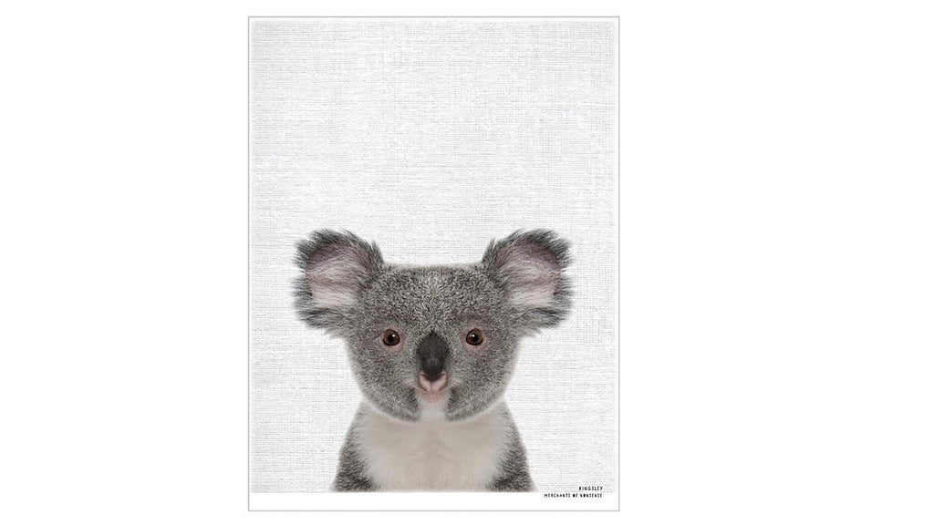 Kingsley - Baby Koala Framed Animal Print