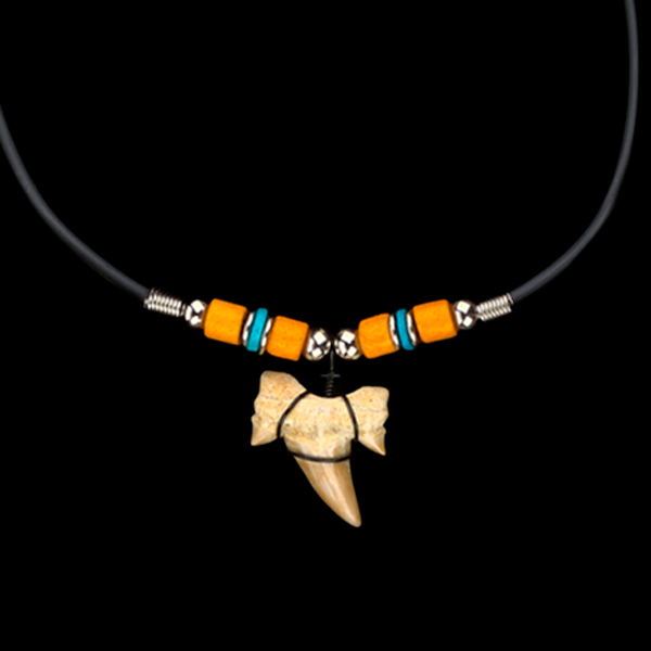 Fossil Necklaces