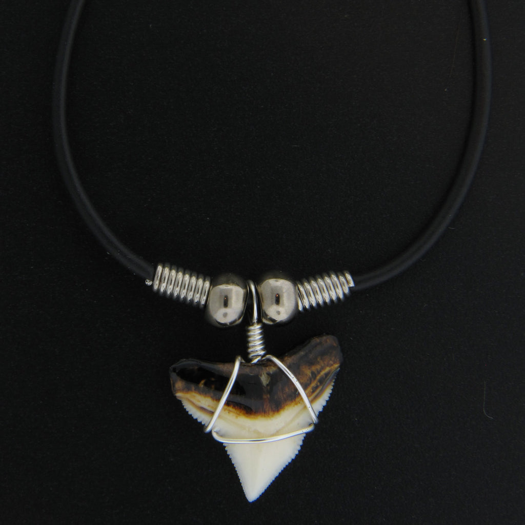 "3/4"" Bull Shark Burnt Top Necklace"