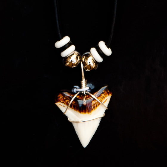 "7/8"" Bull Shark Burnt Top Necklace"