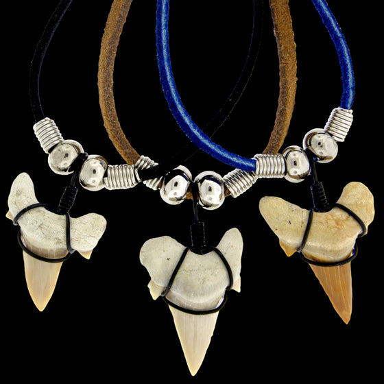 "1 & 1/4"" Mackerel Shark Suede Necklace"