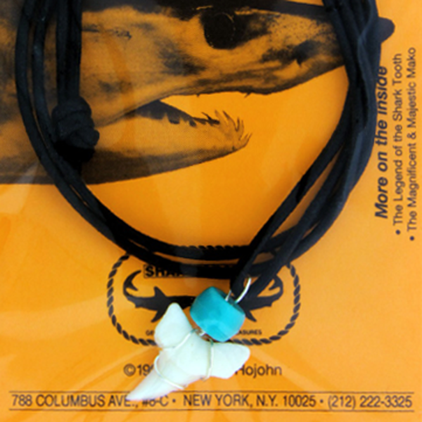 Modern Shark Tooth Necklace With Orange Card