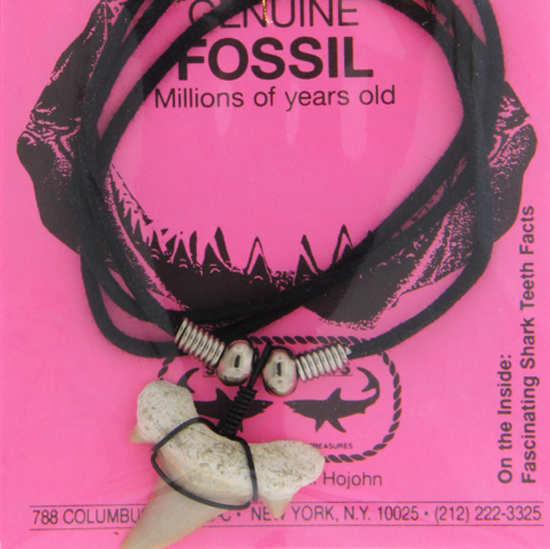 Fossil Necklace With Pink Card