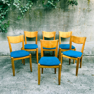 Team 7 Dining Chairs (4) (reserved)