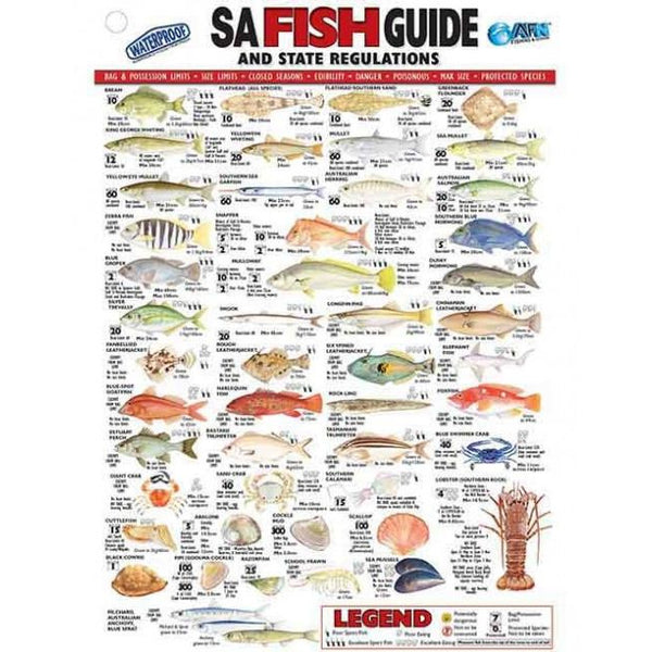 AFN Australian State Specific Fish ID Charts