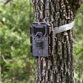 Bushnell Trophy Aggressor No Glow 20Mp Camera 119876C - FREE SHIPPING - Ghillie Outdoors Hunting & Fishing