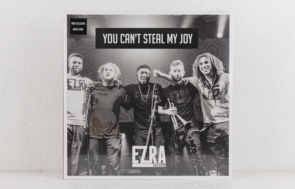 You Can't Steal My Joy – Vinyl 2-LP