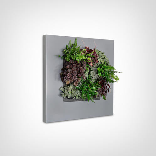 LivePicture I Wall Planter Frame