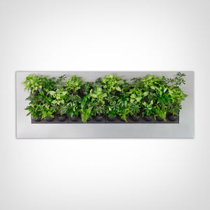 LivePicture IV Wall Planter Frame