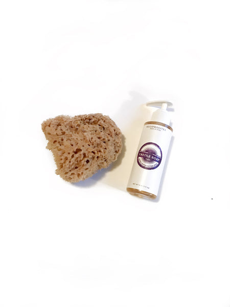 Reciprocitee Castile Soap and Wool Sea Sponge