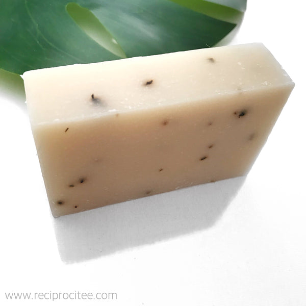 Reciprocitee Tea Tree Mint Bar Soap