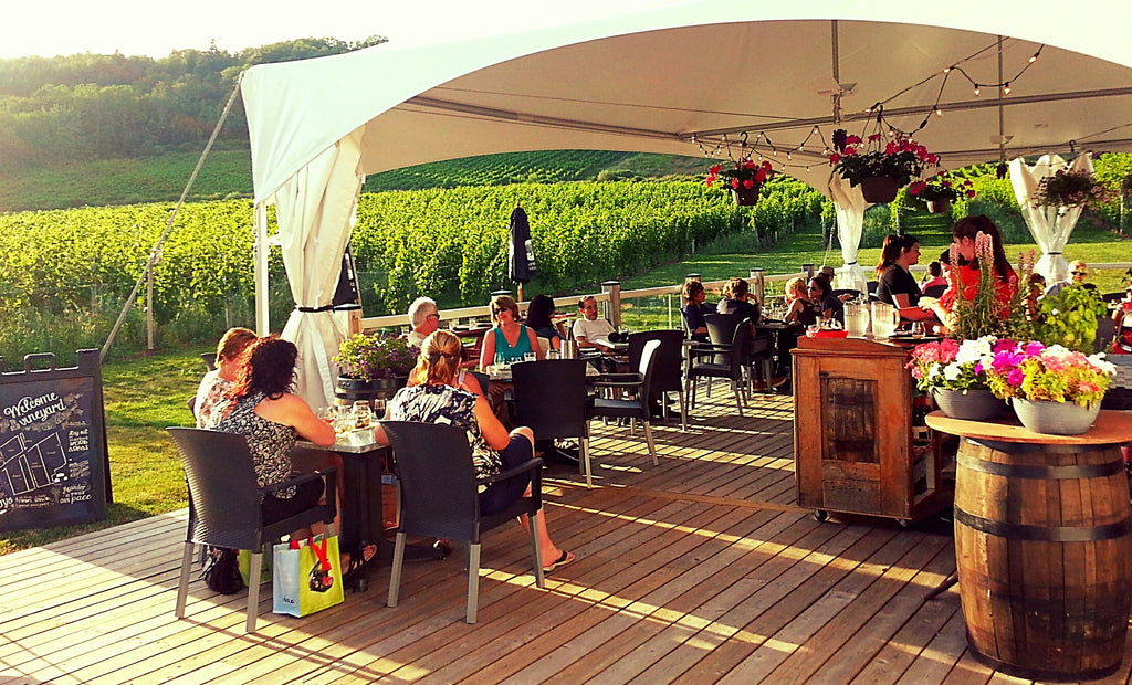Photo of people seated at tables on an outdoor deck overlooking a vineyard