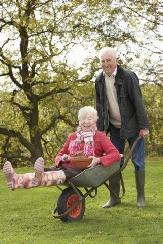 Not just for athletes, blackcurrants deliver big benefits for the over-50s