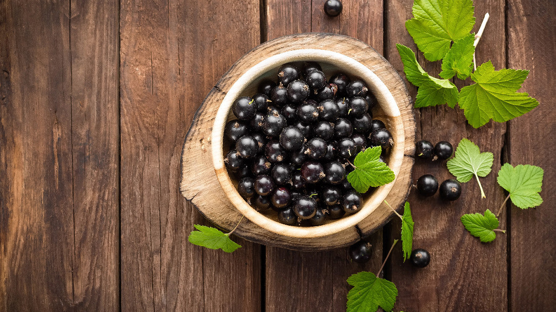 NZ Blackcurrants,Homegrown with pride.