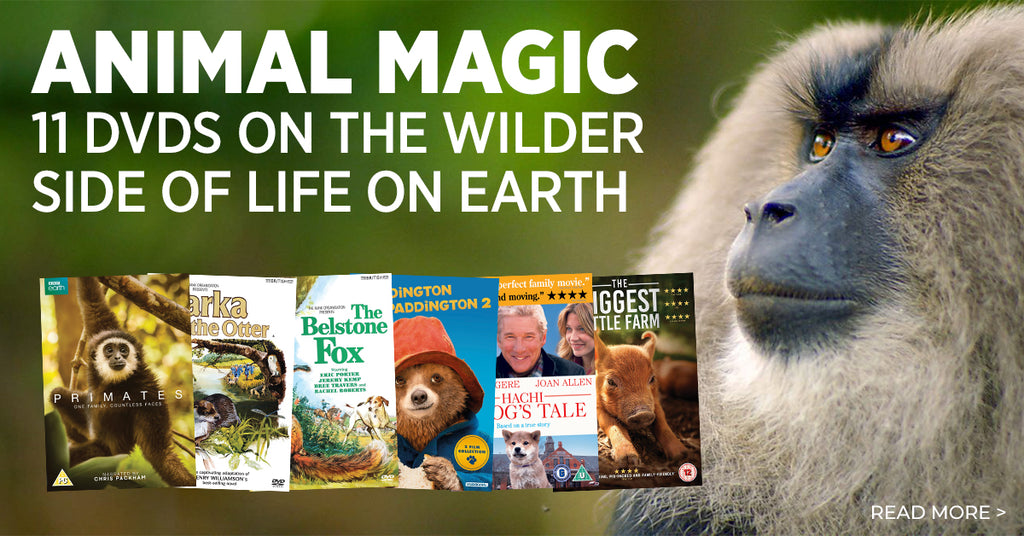 Animal Magic – 11 DVDs on the wilder side of life on earth