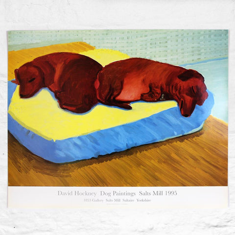 Dog 38 Poster by David Hockney