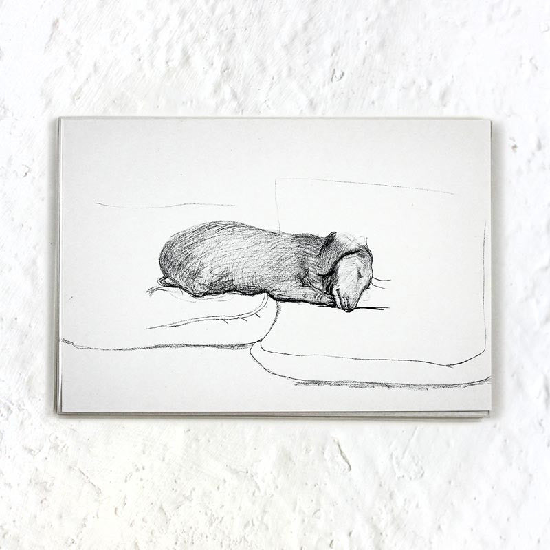 Dog Line Drawing Postcard Pack (x10) by David Hockney