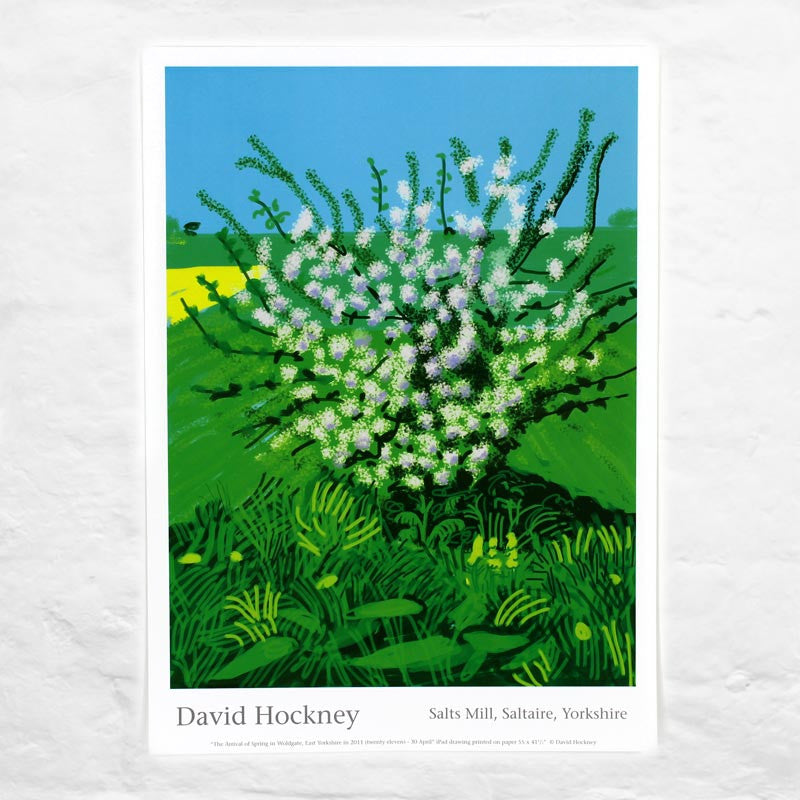 30th April 2011 (The Arrival of Spring) by David Hockney