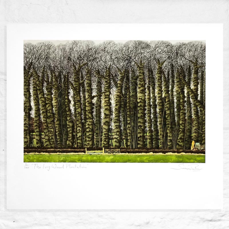 The Ivy Wood Plantation - Signed Limited Edition Print by Simon Palmer