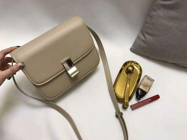 Lustruous Clasp Closure Purse