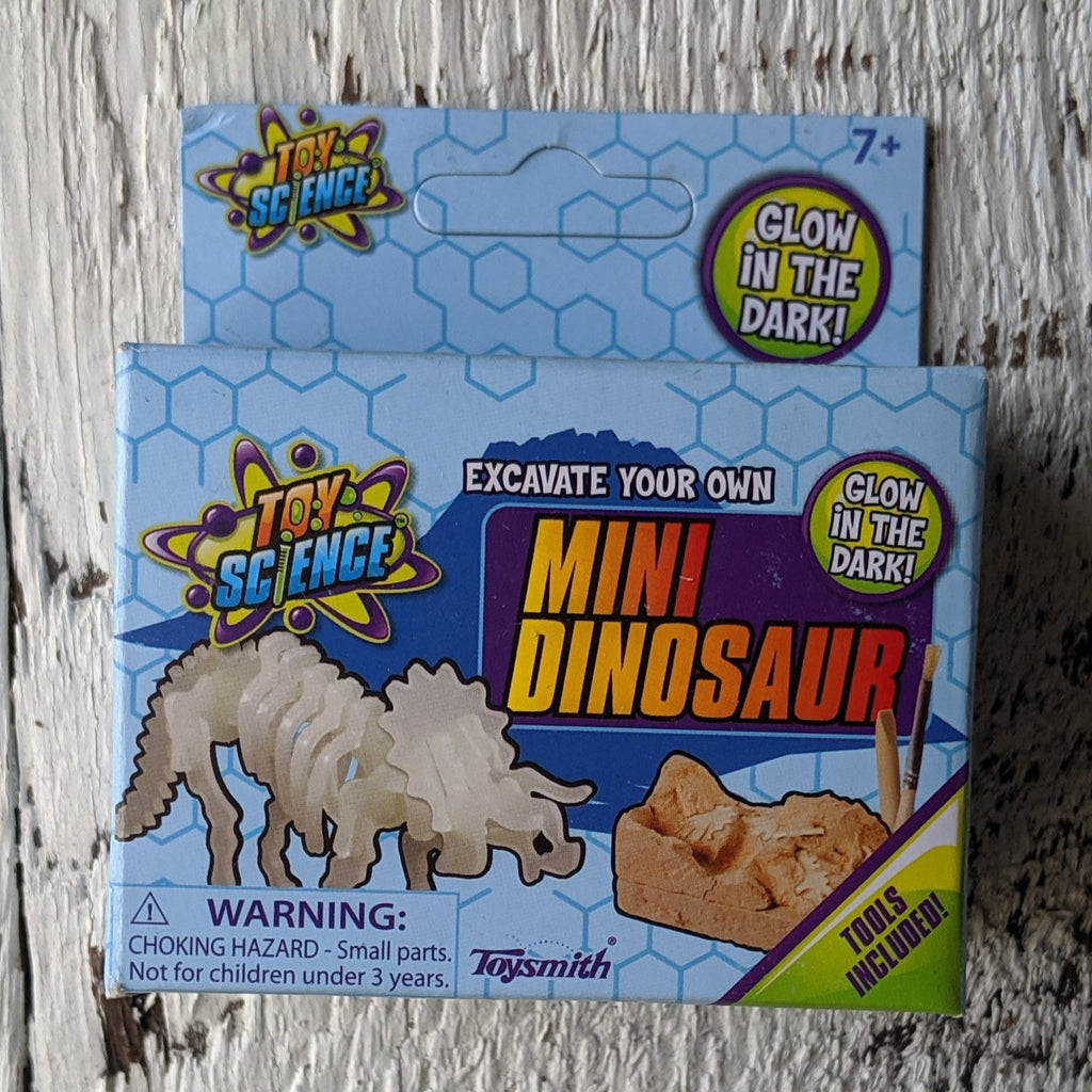 Excavate your own mini dinosaur party favor toy