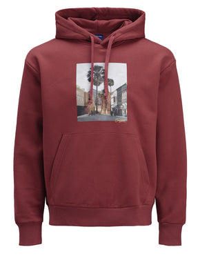 ADVENTURE PHOTO PRINT HOODIE