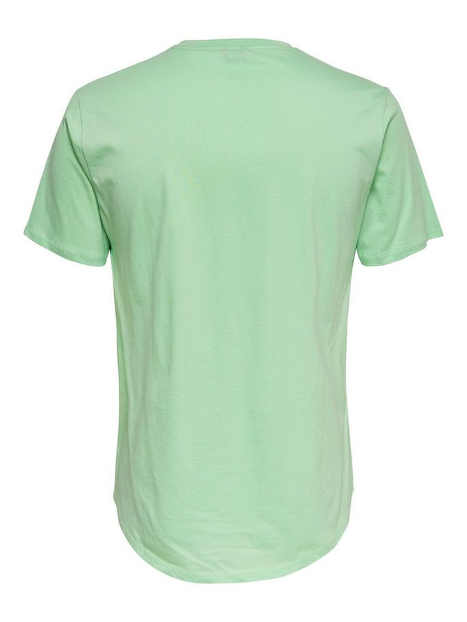 LONG FIT T-SHIRT WITH A CURVED HEMLINE GRAYED JADE