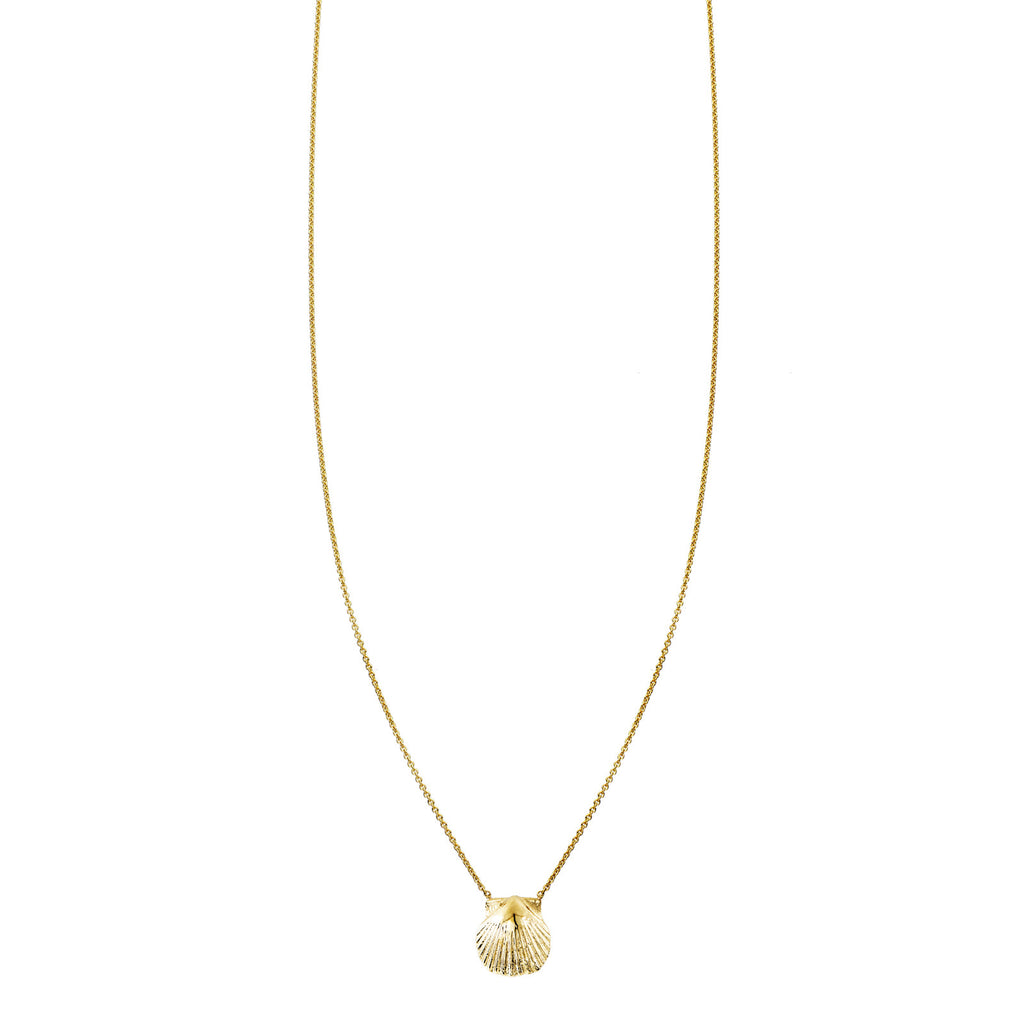 Image of a Gold Shell Necklace