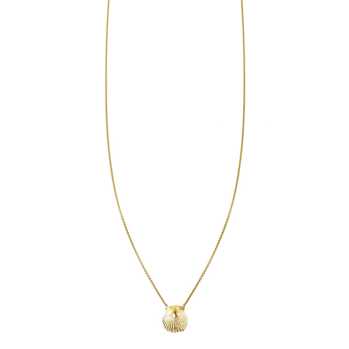 Image of Gold Shell Necklace