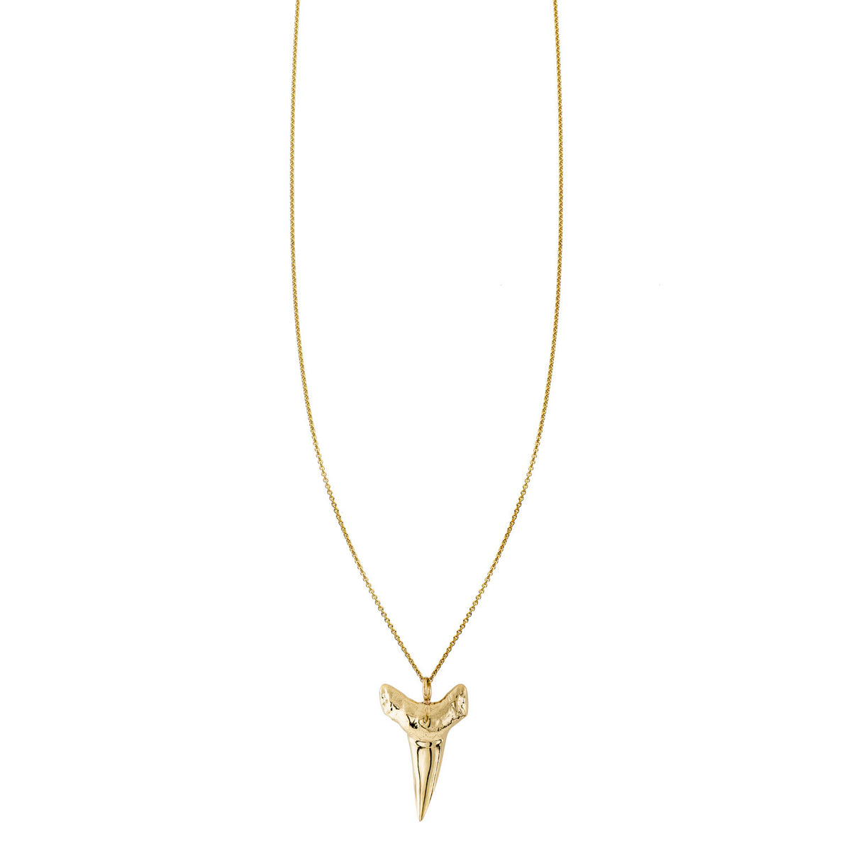 Shark tooth charm necklace on a gold chain gold shark teeth charms gold and trendy charm necklace 5 gold shark teeth charms