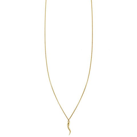 Gold Italian horn charm pendant necklace