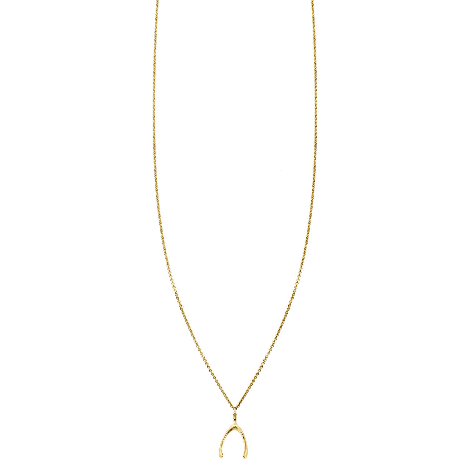 Image of Wishbone Gold Necklace
