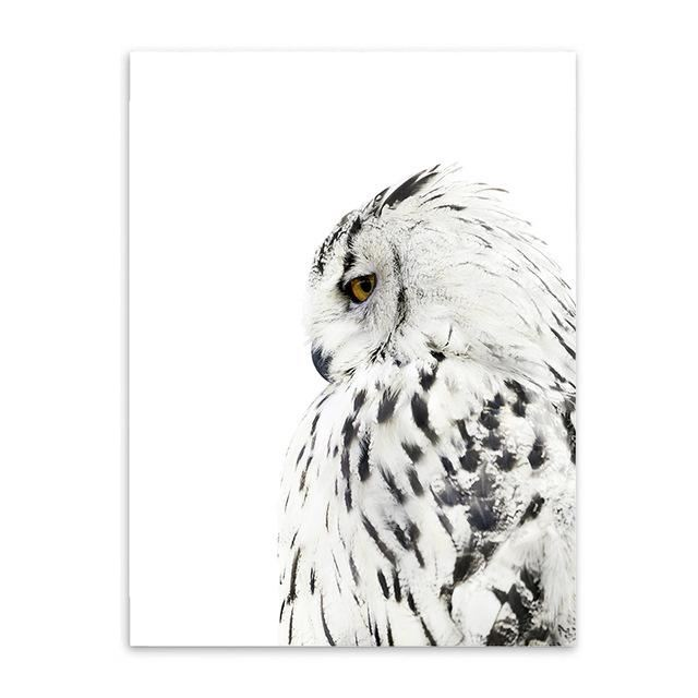 Nordic Owl Feather Bohemian Boho Interior Design Canvas Art Prints 20X25Cm No Frame / Wall