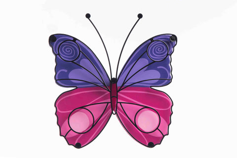 Butterfly Purple And Pink