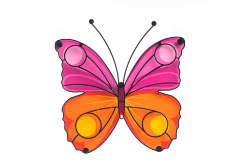 Butterfly Pink And Orange