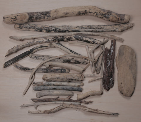 Driftwood | scooms