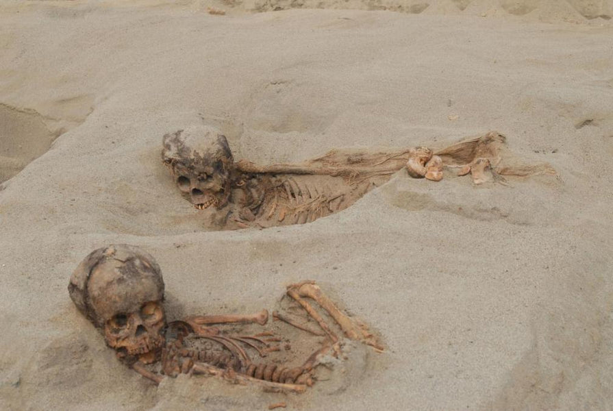 Ancient Mass Child Sacrifice Discovered in Peru May Be World's Largest