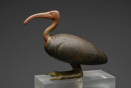 An Ancient Egyptian Bronze Ibis in Glass
