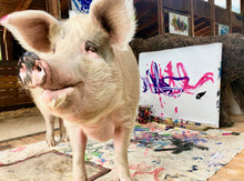 PIG FLOYD  'Just another pig on the wall' PIGCASSO 2019
