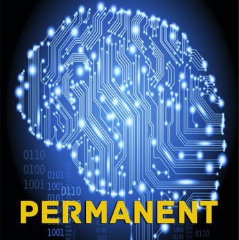 Automated Algorithmic Trading System - PERMANENT OWNERSHIP (ALL MARKETS) - Right Line Trading
