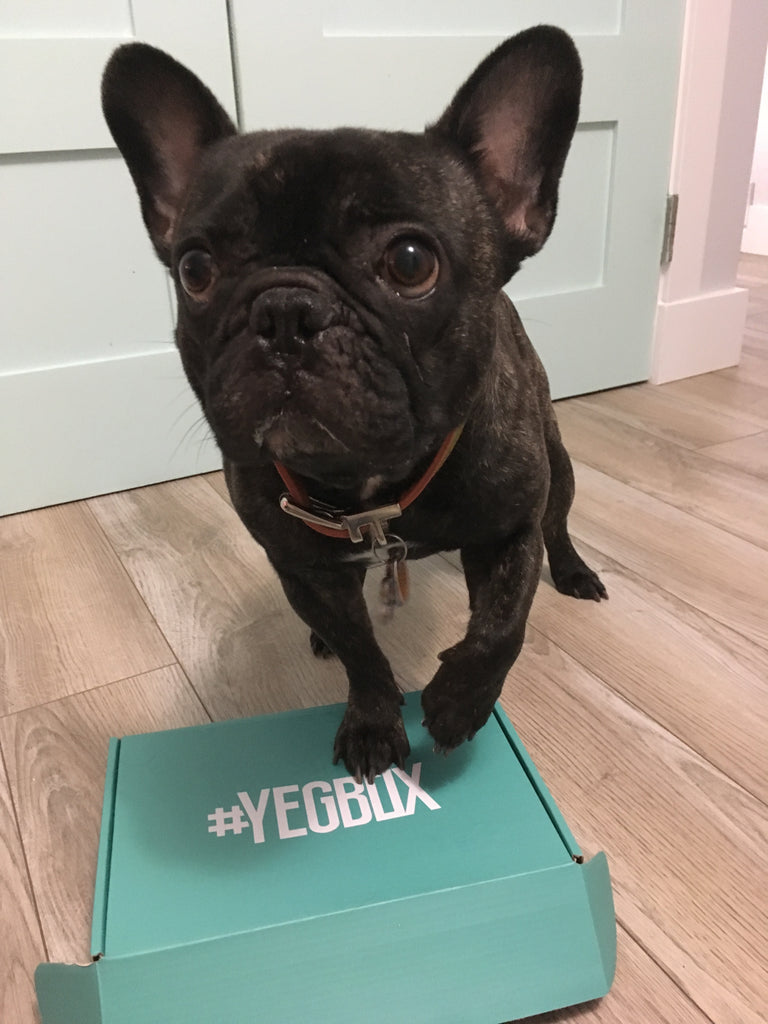 Hold on to your hats! YEGBox has been up to big things!!!