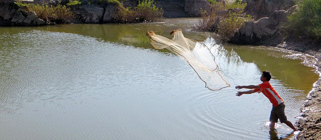 Throwing a net to fish