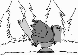 Does a Bear Poop In The Woods