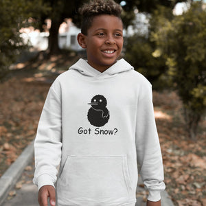 Got Snow? Build a Snowman! Novelty Youth Hoodies (No-Zip/Pullover)